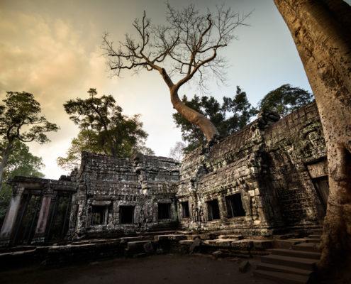 Cambodia Angkor (ALVA001)