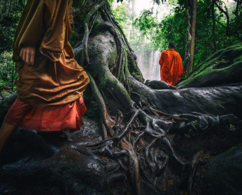 Cambodia Monks (ALVA003)