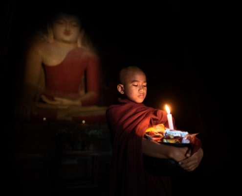 Myanmar Novice (ALVA010)