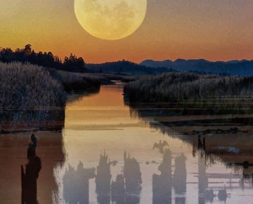 (DeHo004)Dancing In The Moonlight