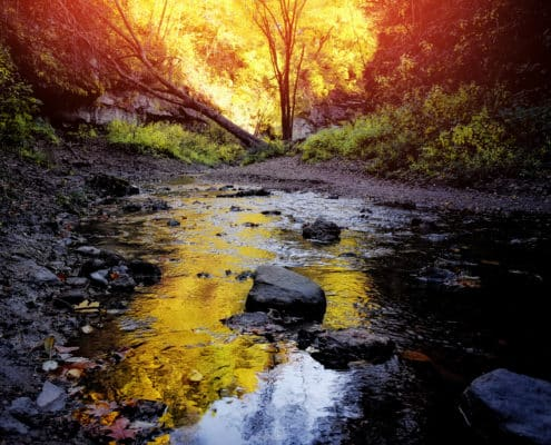 (ToHB006)Matthiessen Canyon Creek