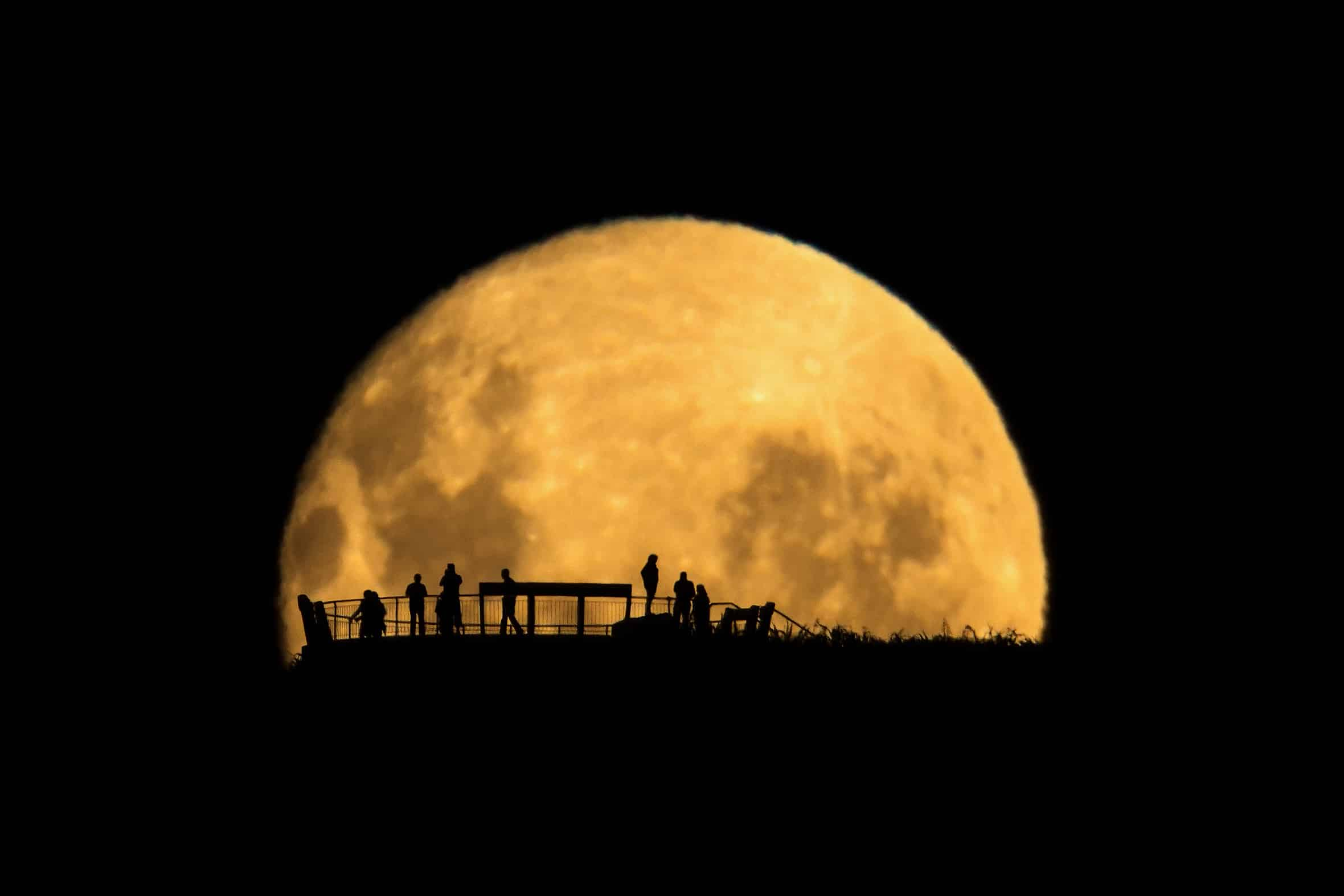 Moon-Silhouettes-MAGE001-.jpg